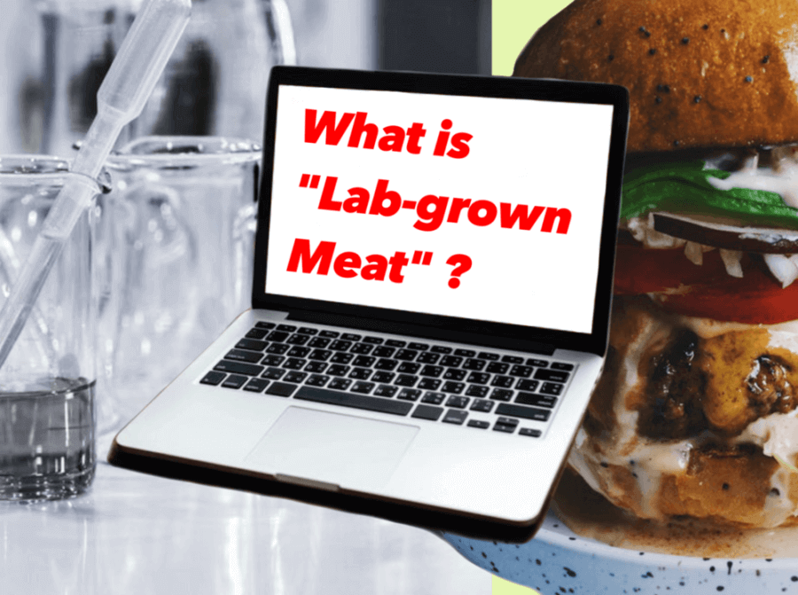 pic-whats-lab-grown-meat