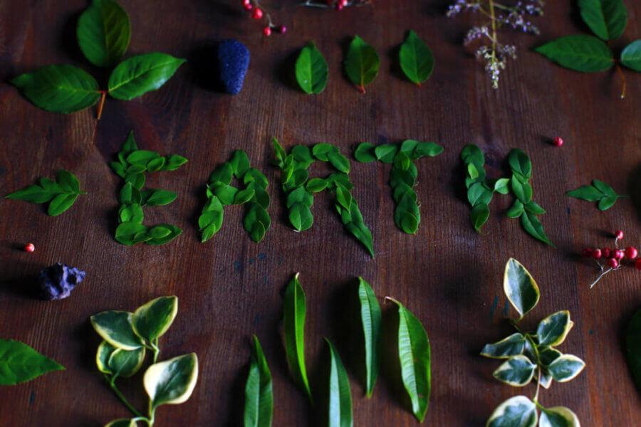 earth-leaves
